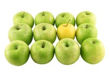 Free Green Apples And A Yellow One Royalty Free Stock Images - 2342899