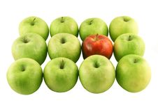 Free Green Apples And A Red One Stock Image - 2342901