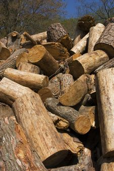 Free Woodpile 1 Stock Images - 2344314