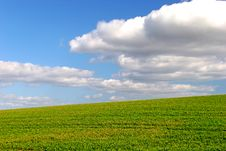Free Green Field - Background Royalty Free Stock Photography - 2344437