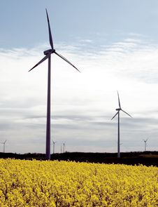 Wind Turbines, Yellow Field. Stock Photos