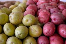 Free Green And Red Potatoes Stock Images - 2346484