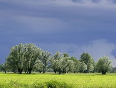 Free Meadow Before Lighting Storm Royalty Free Stock Photos - 2347258
