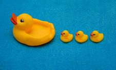 Free Three Ducklings And A Duck Royalty Free Stock Images - 2347789