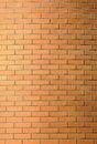 Free Red Brick Wall Stock Image - 23403501