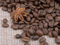 Free Background From Grain Of Coffee And Anise Spilled Stock Image - 23412001