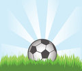 Free Soccer Ball Stock Images - 23416134