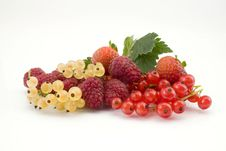 Free Mixture Of Fruits Stock Photography - 23414582