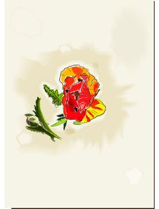 Free Vintage Watercolor Card With Poppy Stock Image - 23416611