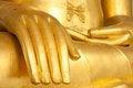 Free Buddha Hand Royalty Free Stock Photo - 23421375