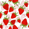 Free Seamless Floral Pattern &x28;vector&x29; Stock Photography - 23424892