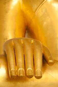Free Buddha S Hand Royalty Free Stock Images - 23421379