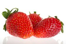 Free Fresh Strawberry Stock Photos - 23421483