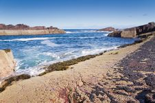 Free Rocks,sea And Mussels Royalty Free Stock Image - 23426356