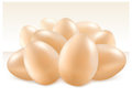 Free Group Of Eggs Stock Image - 23437851