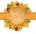 Free Beautiful Frame Of Yellow And Orange Autumn Leaves Royalty Free Stock Photography - 23446157