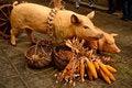 Free Italian Market Of Sausages Stock Photos - 23457713