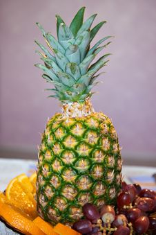 Free Pineapple Stock Photography - 23453352