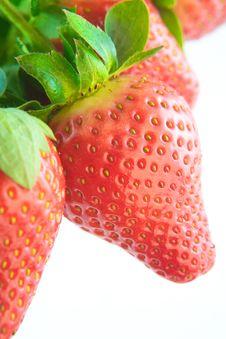 Free Red Strawberries Closeup Stock Photo - 23457030