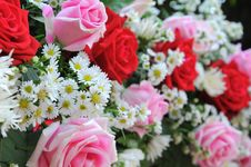 Free White Daisy On Bouquet Of Roses Royalty Free Stock Image - 23458586
