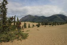 Free Carcross Desert Royalty Free Stock Photos - 23467848