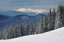 Free Winter Landscape Royalty Free Stock Photography - 23484367
