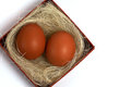 Free Two Fresh Brown Eggs In Box Royalty Free Stock Image - 23499186