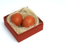 Two Fresh Brown Eggs In Box Royalty Free Stock Photos