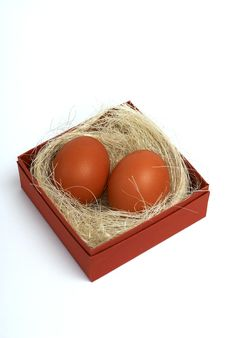 Two Fresh Brown Eggs In Box Stock Images