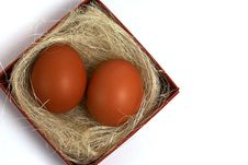 Two Fresh Brown Eggs In Box Royalty Free Stock Image