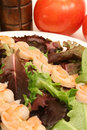 Free Shrimp Skewers On Salad Vertic Royalty Free Stock Photo - 2350355