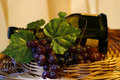 Free Grapes With Leaf And Wine Stock Photos - 2350873