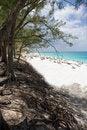 Free Bahamas Beach Royalty Free Stock Photography - 2352217