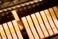 Free Inside A Piano, One Note Royalty Free Stock Photo - 2356145