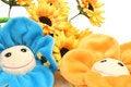 Free Smiling Flowers Stock Photo - 2356660