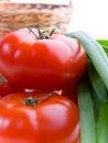 Free Tomatoes Stock Photo - 2356770