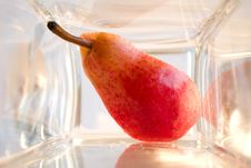 Free A Bit Of Pear In A Glass Box Stock Image - 2350601