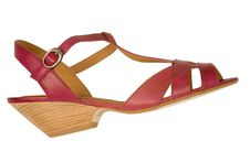 Free Shoe Royalty Free Stock Photo - 2351435