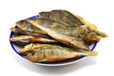 Free Fish Royalty Free Stock Photos - 2353208