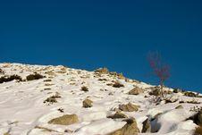 Free Snow Rocks And Blue Stock Photo - 2356890