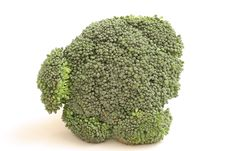 Free Head Of Broccoli Straight On Stock Photo - 2356900