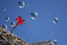 Bubble In The Sky. Stock Photography