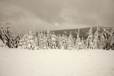Snowfall In The Mountains Royalty Free Stock Image