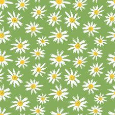 Free Camomille Flowers Seamless Pattern Royalty Free Stock Photos - 23518338