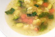 Soup Of Ten Vegetables Close Up Stock Images