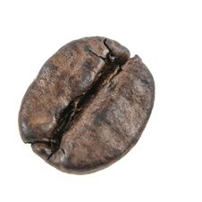 Free The One Coffee Bean Stock Photo - 23530460