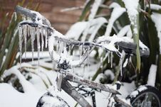 Free Closeup Of Ice-covered Frozen Bike Royalty Free Stock Photography - 23535597