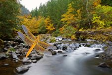 Free Shades Of Autumn Gold Landscape Stock Photography - 23536542