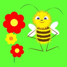 Free Bee Stock Photography - 23542122