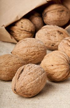 Free Walnuts Royalty Free Stock Images - 23544709